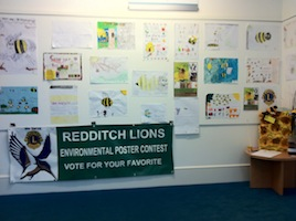 Lions  BEE POSTER DISPLAY in REDDITCH LIBRARY