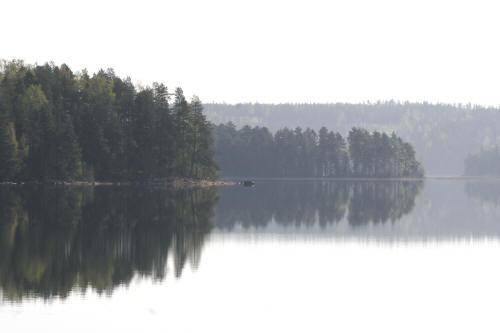 Kesäinen maisema Ruovedeltä.  Kuva Heikki Saarinen