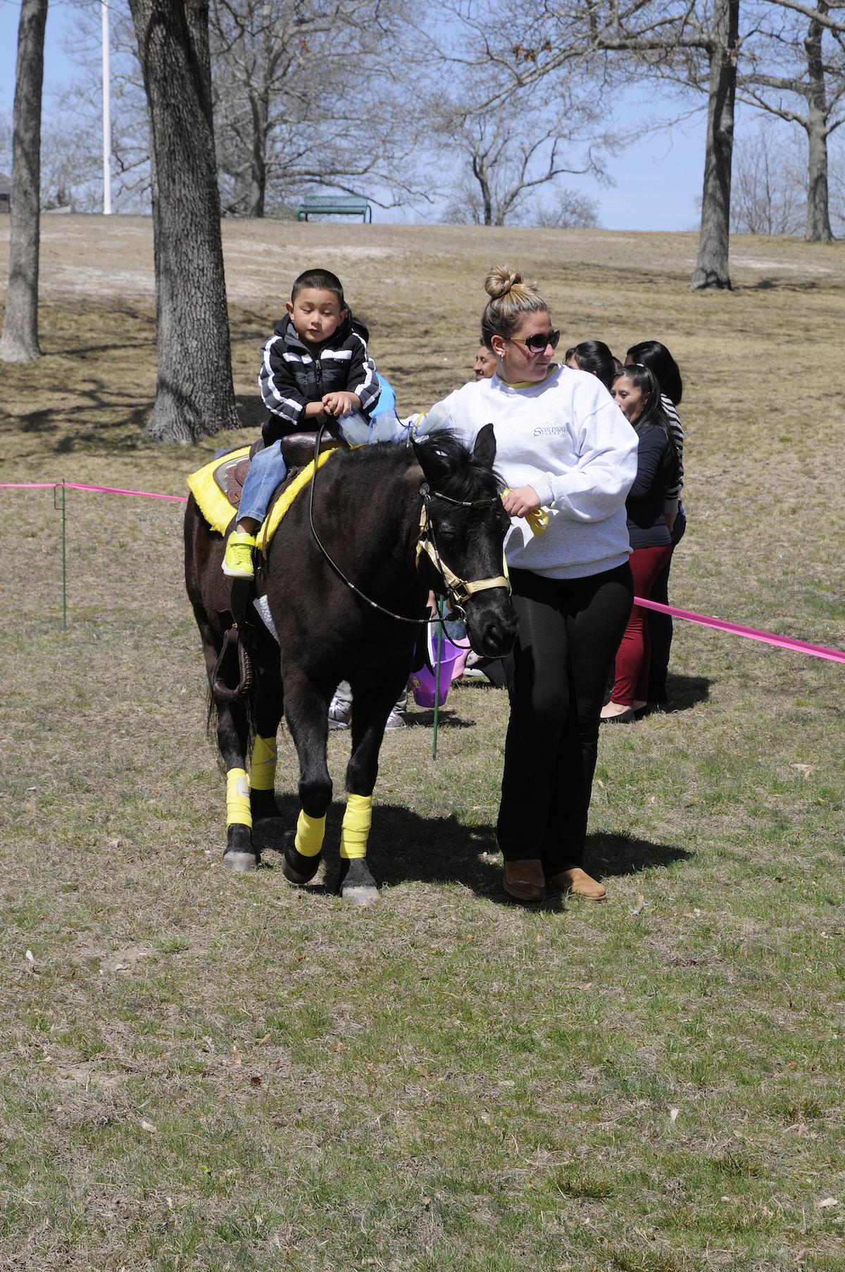 Pony Ride by Scorpion Farm, Southampton