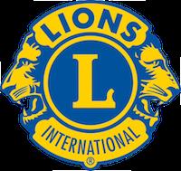 Lions 2-color Logo