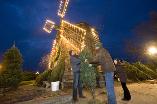 Lions sell Christmas trees at the windmill