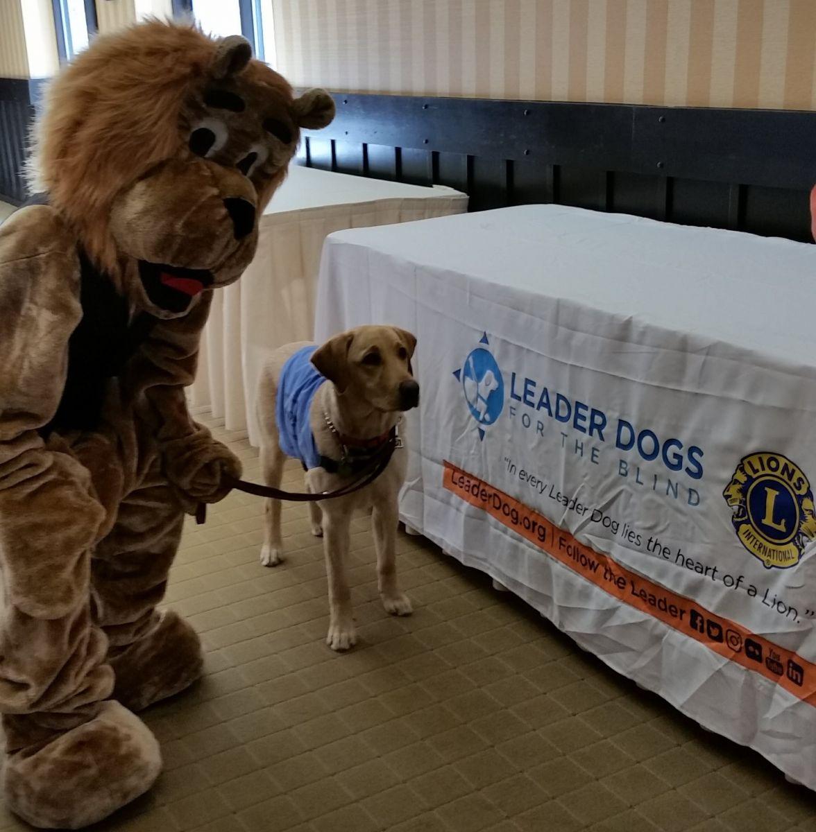 Lion Leader Dog