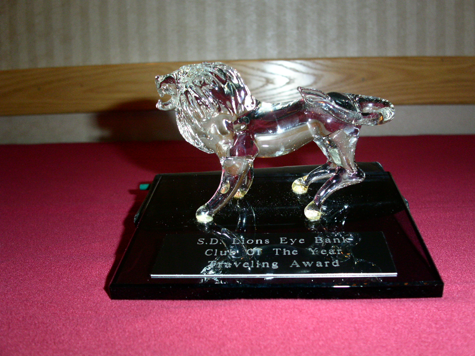 South Dakota Club of the Year 2010