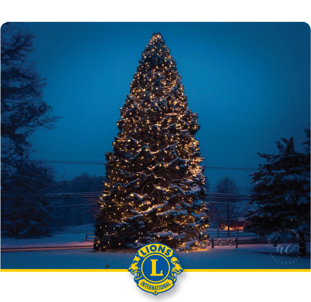 Stow's Annual Holiday Tree Lighting