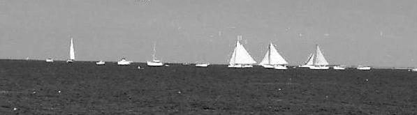 he Skipjack Races are sponsored and hosted by the Deal Island - Chance Lions Club.